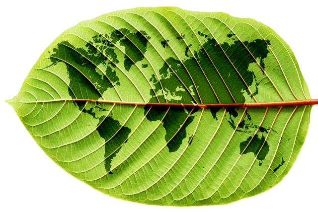 global-sustainability